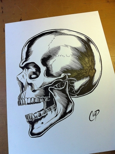 396x530 A Roundup Of Awesome Skull Illustrations And Designs Crispme