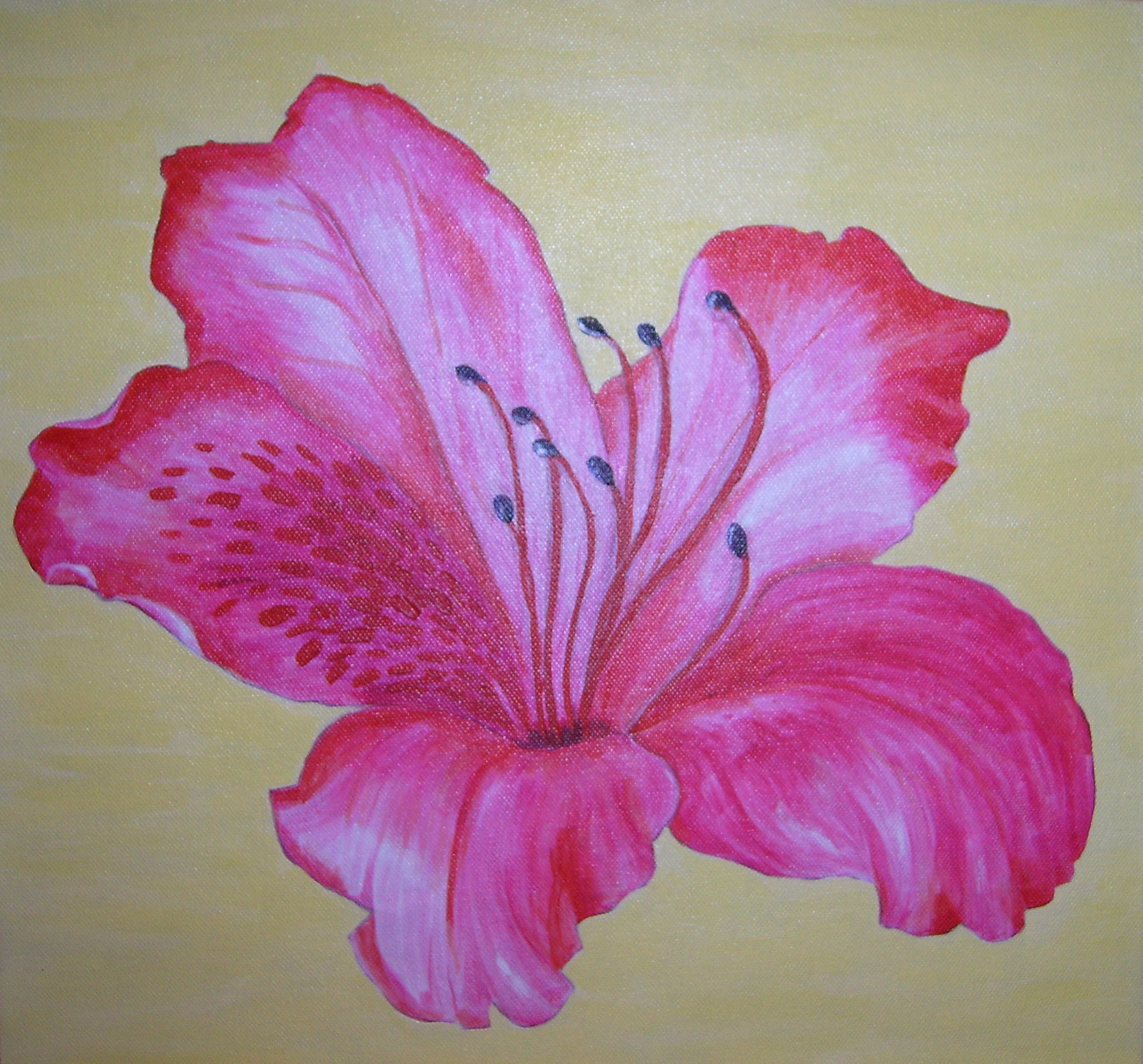 Azalea Flower Drawing At Getdrawings Free For Personal Use