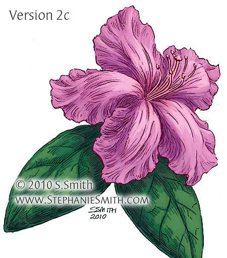 450x511 Azalea Flower Drawing