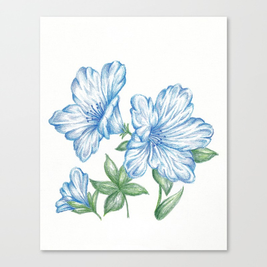 550x550 Flower Drawing Print Blue, Azalea Botanical Art Canvas Print By