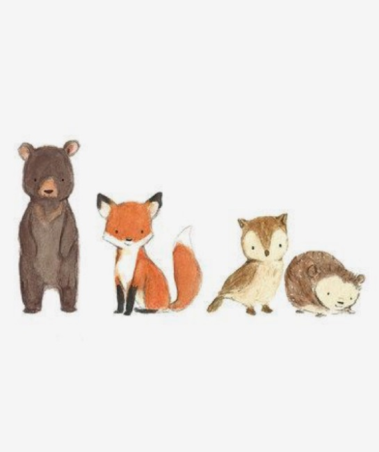 545x650 Pin By Jessica Harper On Art Drawings, Foxes And Animal