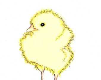 baby chick drawing at getdrawings com free for personal use baby