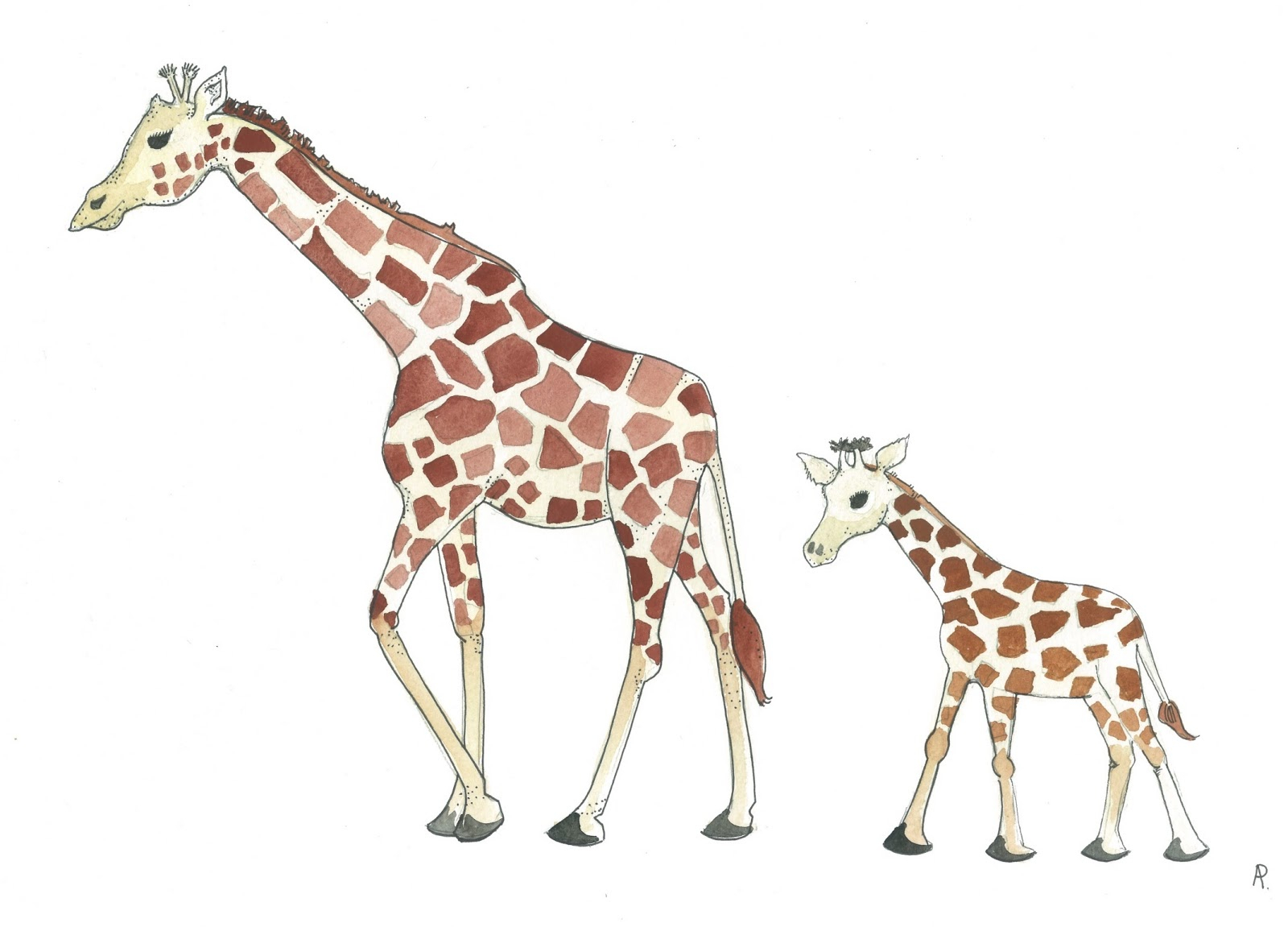 1600x1151 Baby Giraffe Drawing Mother And Baby Giraffe Drawing