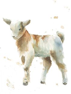 236x312 Baby Goat Painting Large Original Watercolor Nursery Farm Animal