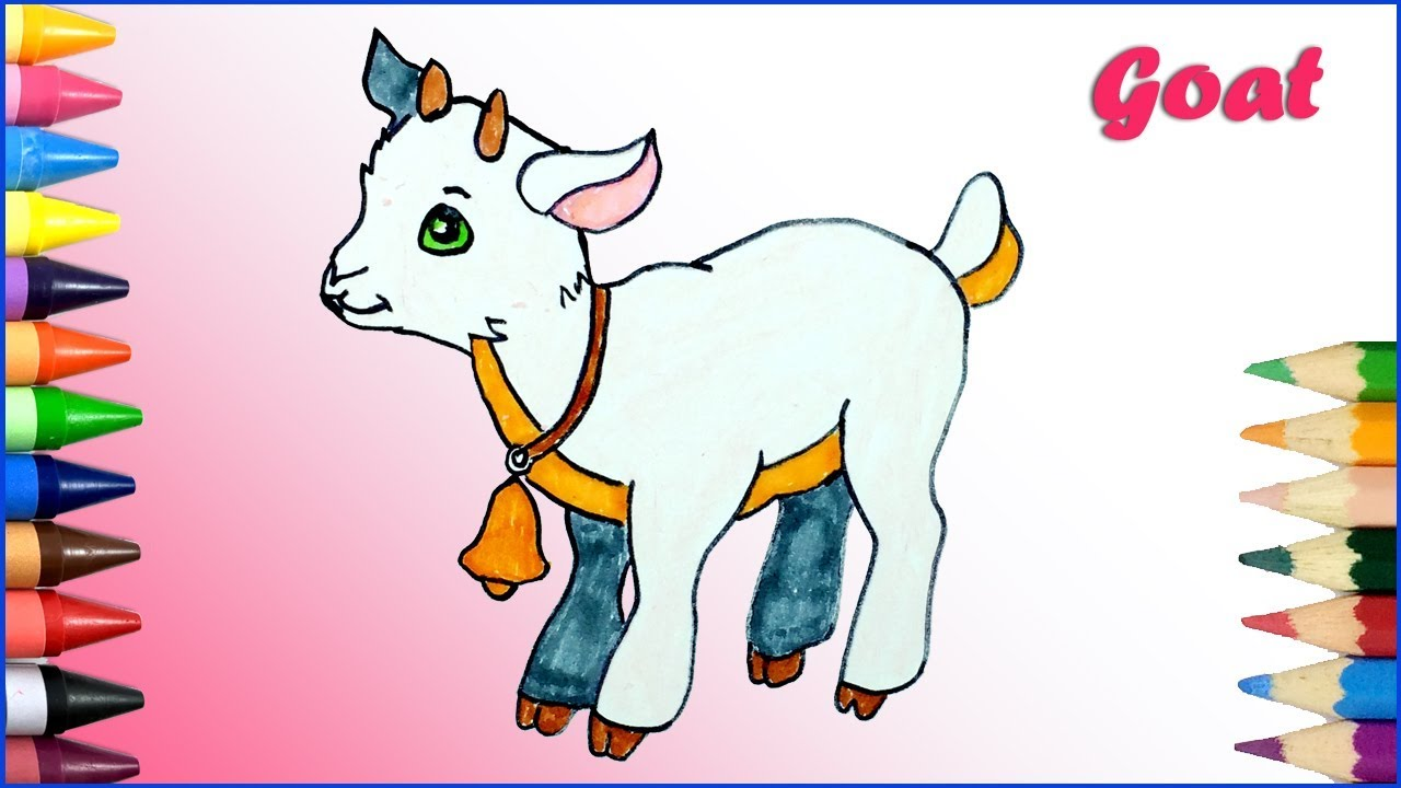 1280x720 How To Draw And Coloring A Baby Goat For Kids Learn Colors