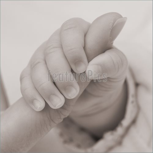 500x500 Baby Hand Picture