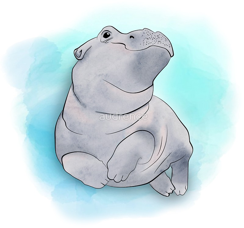 800x746 Fiona The Baby Hippo Swimming Stickers By Audrence Redbubble