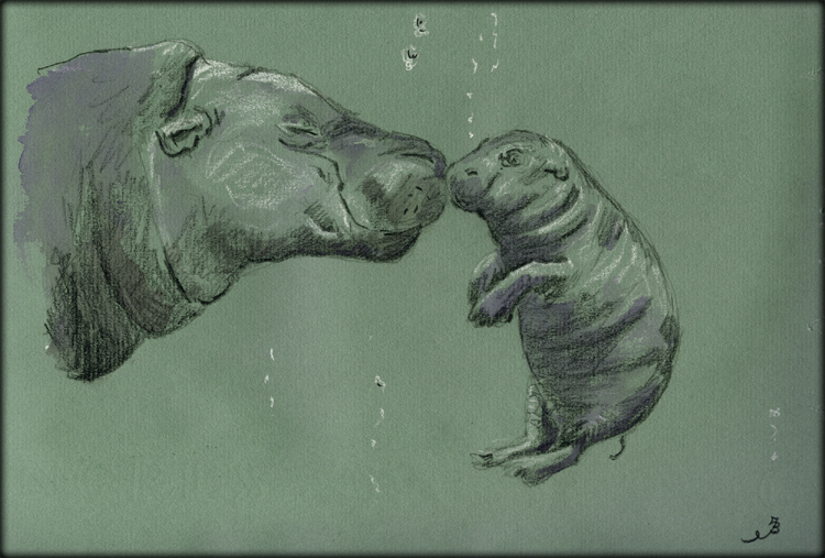 750x507 San Martin Arts Crafts Mother And Baby Hippo.