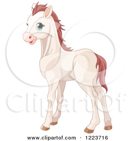 450x470 Cute White Baby Horse With Blue Eyes Posters, Art Prints By