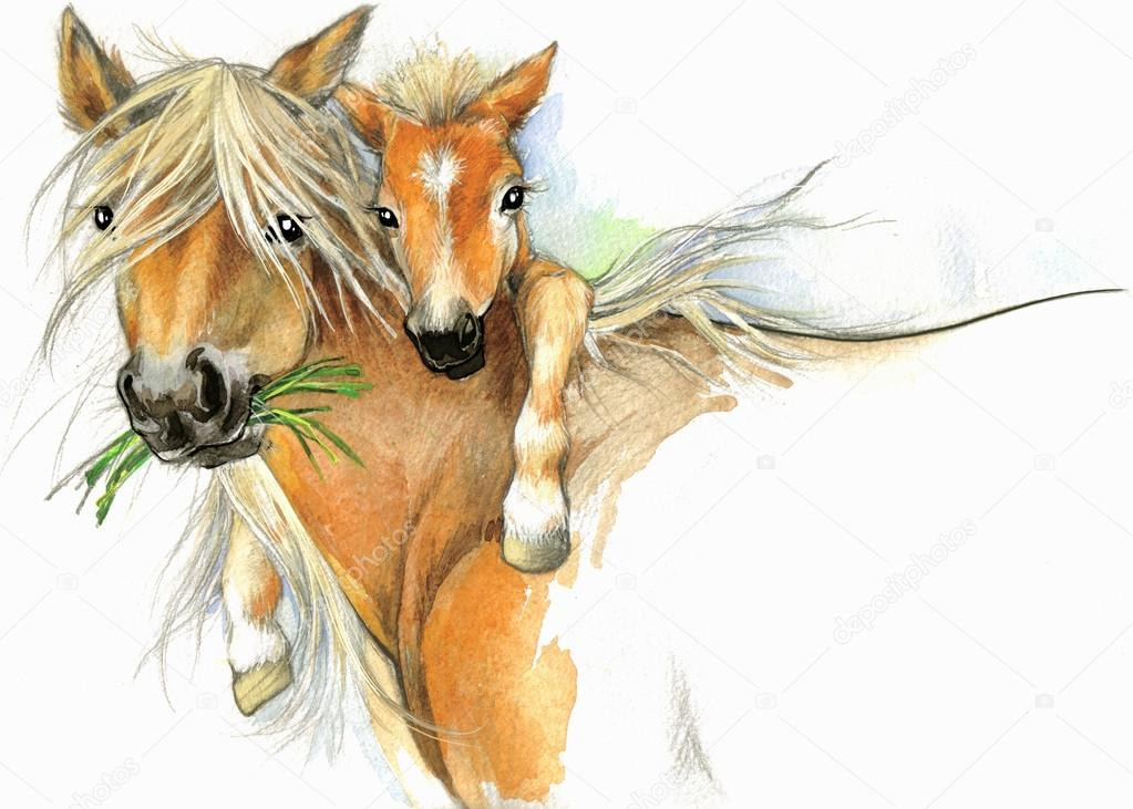1023x731 Watercolor Horse Mom And Baby Stock Photo Dobrynina Art