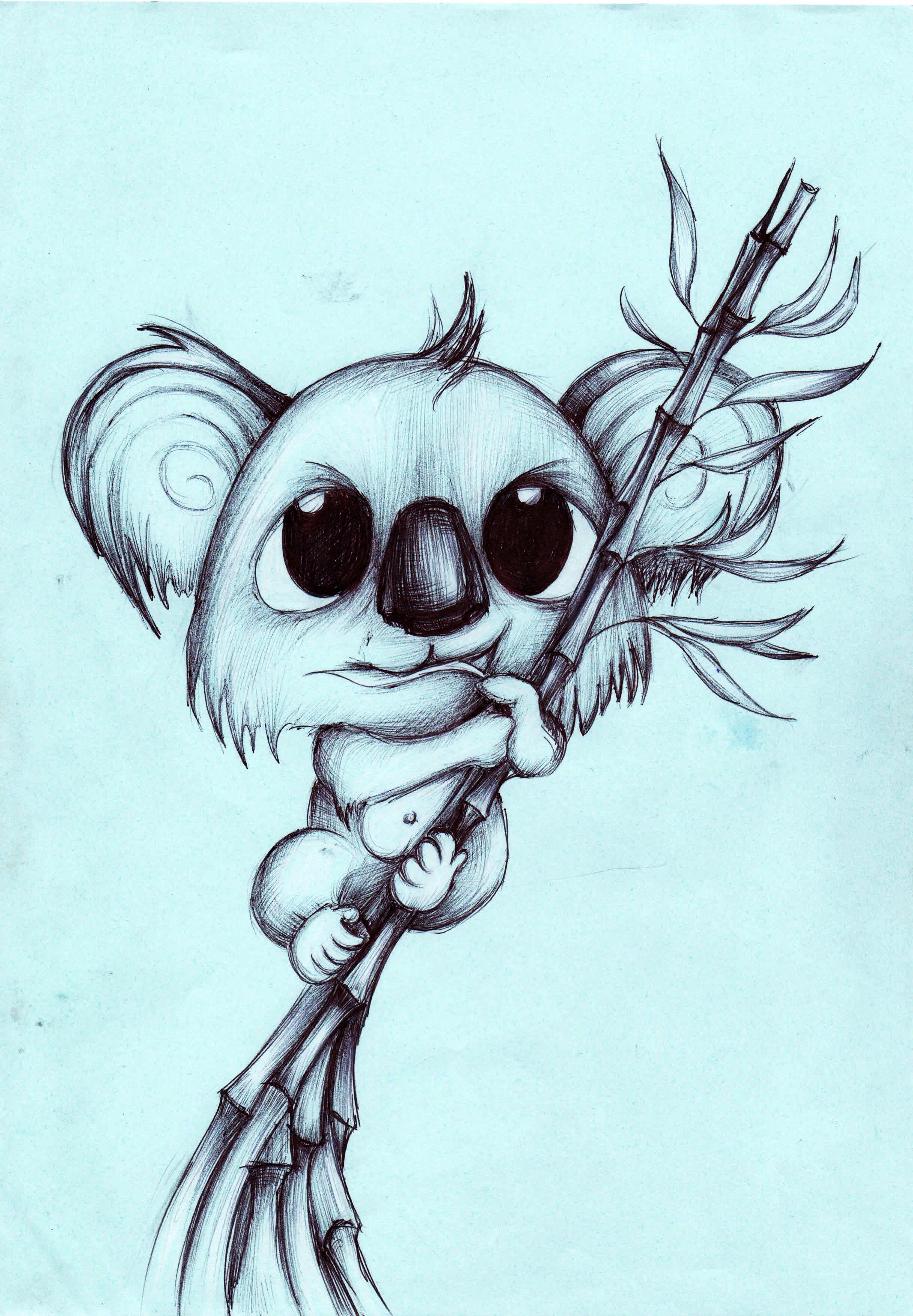 2432x3504 Best Photos Of Cute Koala Drawing