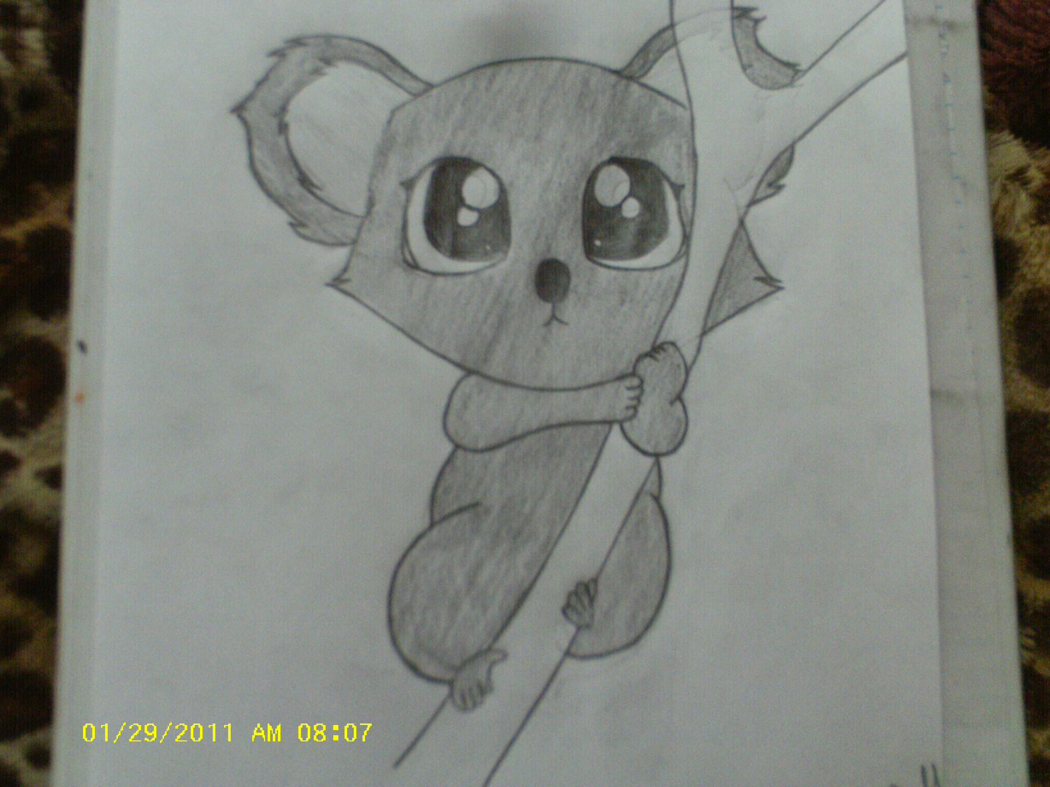2048x1536 How To Draw A Cute Koala