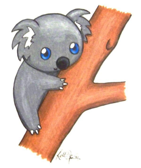 600x713 Cute Koalas Cute Koala Bear Drawings How To Draw Koala Bears