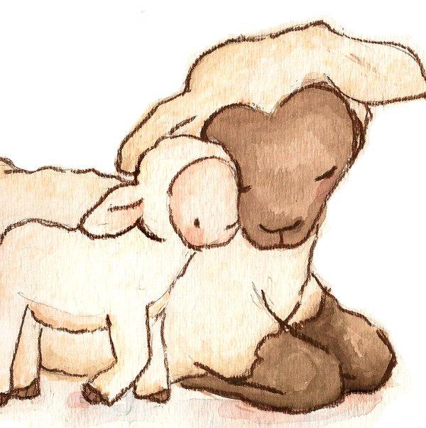 600x602 Children Art Print. My Baby Collection My Baby Lamb. Print