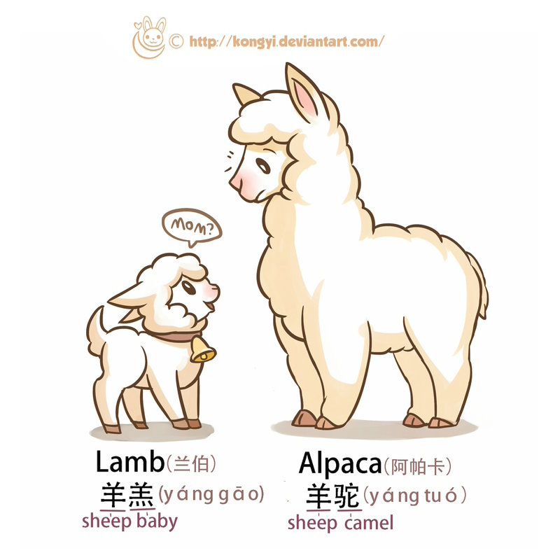 800x800 Daily Drawing Challenge 021 Lamb And Alpaca By Kongyi