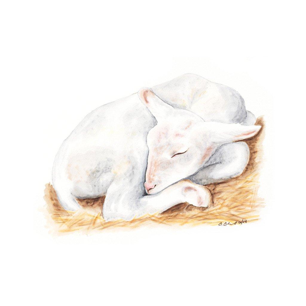 1024x1024 Sleeping Baby Lamb Nursery Art Tiny Toes Design