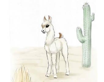340x270 Baby Llama Etsy