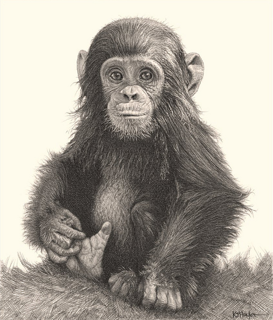 538x631 42 Incredibly Realistic And Adorable Pencil Illustrations