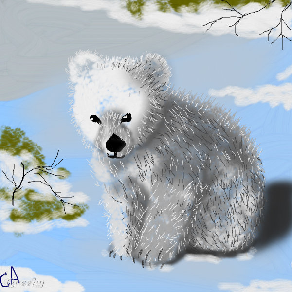 600x600 Baby Polar Bear An Animals Speedpaint Drawing By Sketchpad