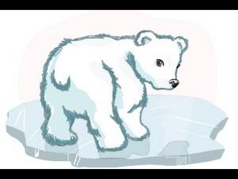 Baby Polar Bear Drawing at GetDrawings.com | Free for personal use ...