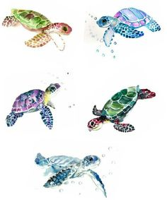 236x283 Best Sea Turtle Painting Products On Wanelo Art