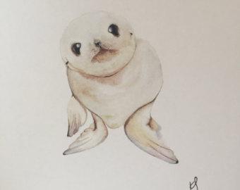 340x270 Baby Seal Art Etsy