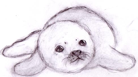 487x273 Drawn Seal