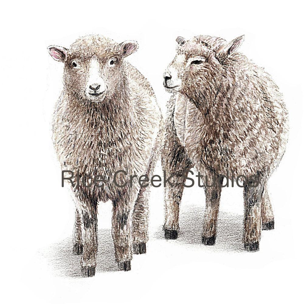 1000x999 Christmas Gift For Heraby Sheepsheep Artsheep Paintingsheep