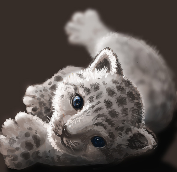 590x572 Baby Snow Leopard By Athena Erocith