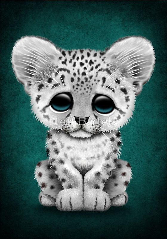 560x800 Cute Baby Snow Leopard Cub On Teal Blue By Jeff Bartels Animales