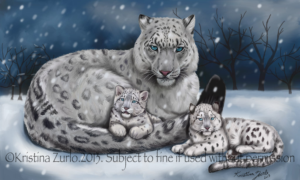 1024x614 Snow Leopard Family By NatsumeWolf On DeviantArt