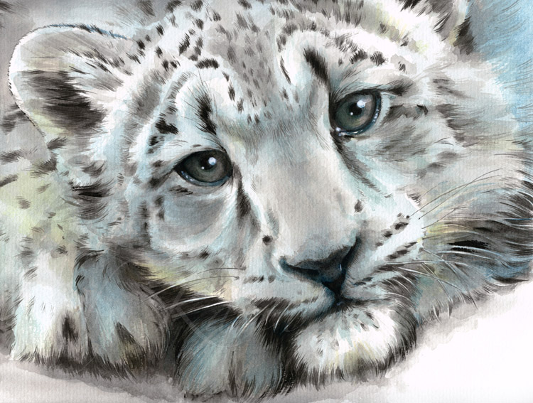 750x567 Young Snow Leopard Baby Painting By Karin Russer