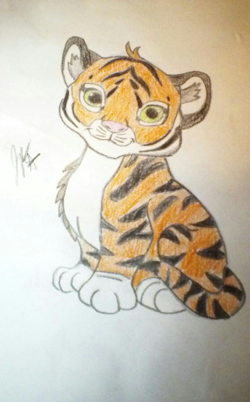 808x1296 Drawing Of A Baby Tiger Baby Tigercarlyscanvas