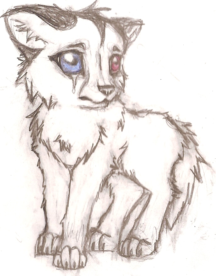 688x880 Baby Wolf Drawing.jpg Anime Wolf