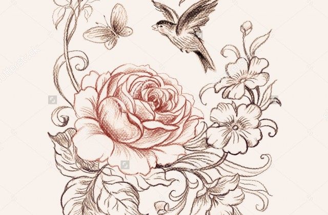 640x420 Tag For Beautiful Art Sketch Bird Mandala Set Other Elements