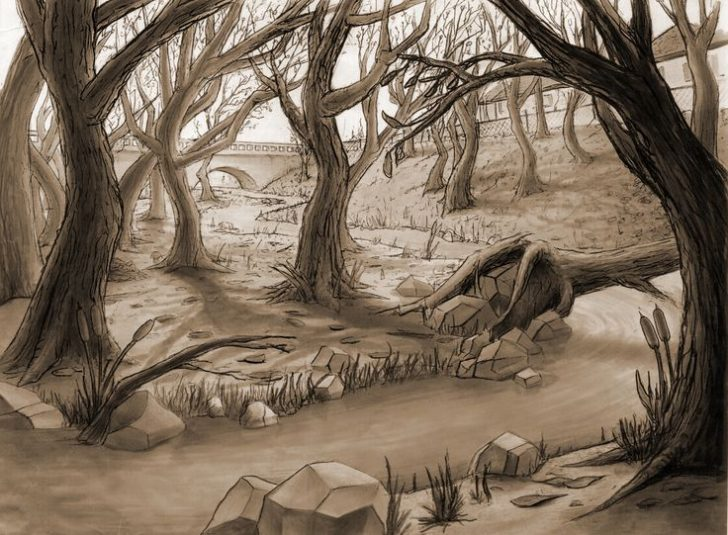 728x535 Drawing Backgrounds