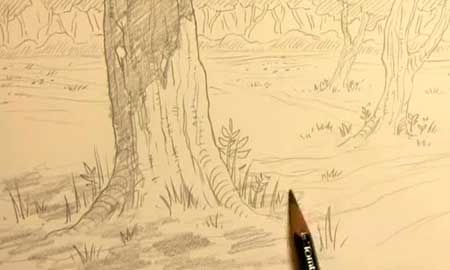 450x270 How To Draw Forest Backgrounds For Manga