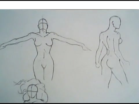 480x360 How To Draw Female Torsos (Front View, Back And Sides)