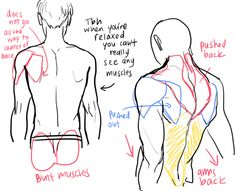 236x191 Tutorial For Drawing Backs. Click Through For More Pictures