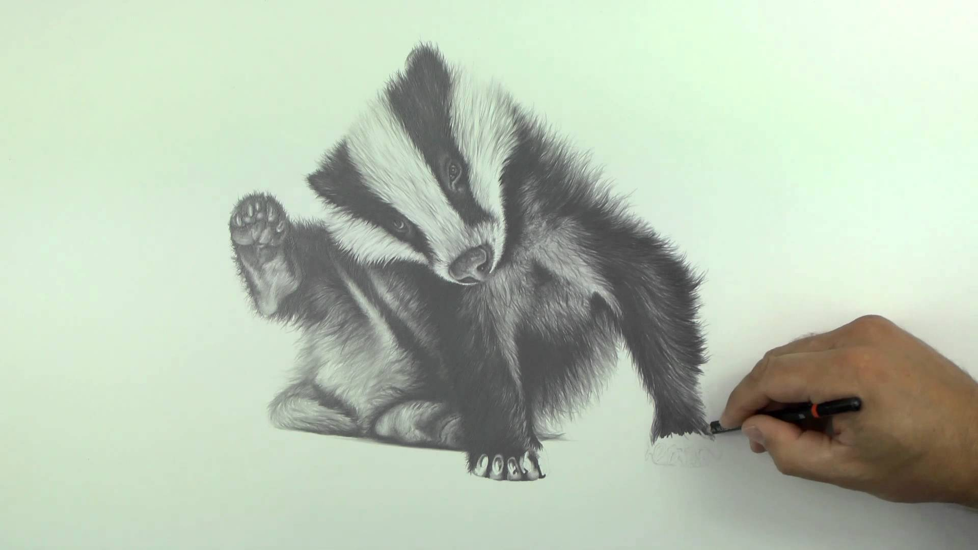 1920x1080 Drawing Billie The Badger