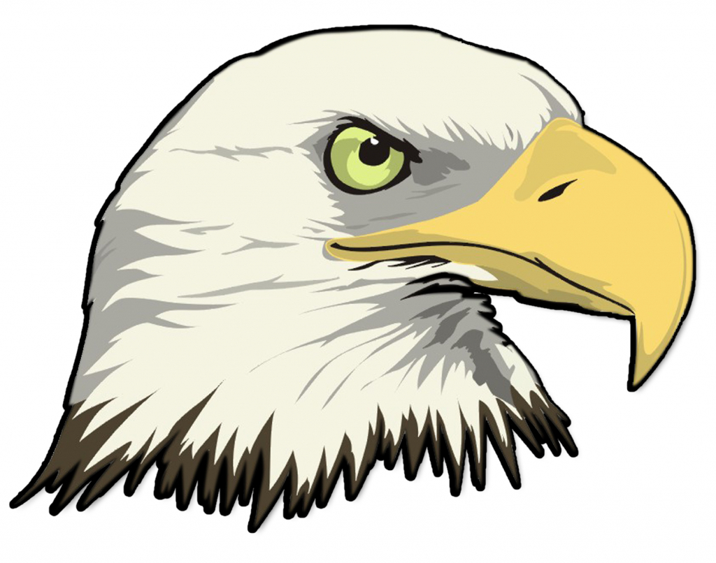 Bald Eagle Drawing at GetDrawings.com | Free for personal use Bald ...