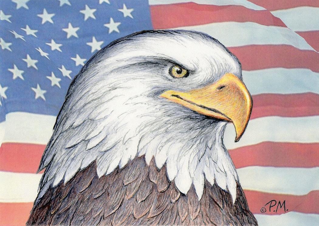 1050x746 American Bald Eagle