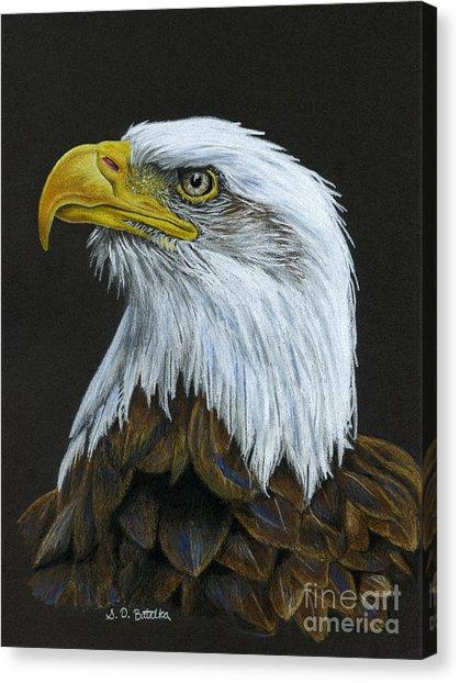 419x622 Bald Eagle Pencil Drawing Canvas Prints Fine Art America