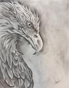 234x300 Original Eagle Pencil Drawing Ebay