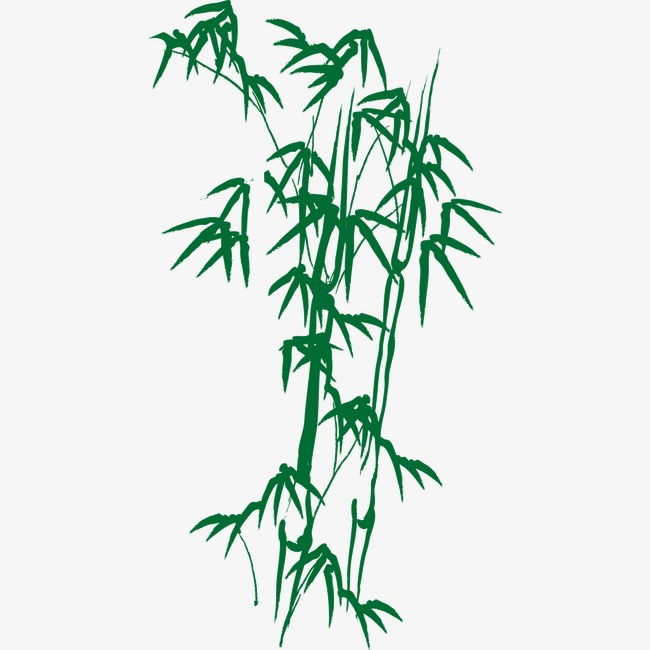 650x650 Drawing Bamboo, Green, Water Color Ink, Bamboo Png Image For Free