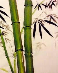 200x252 Resultado De Imagen Para Bamboo Pencil Drawing Orquideas Y Bambu