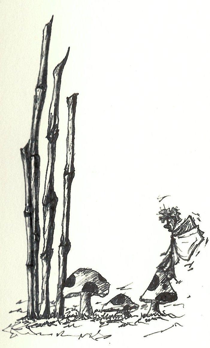 701x1159 Smoking, Mushrooms, Fairies Amp Bamboo Sketch Bw