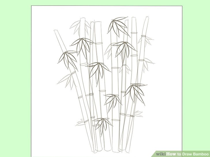 728x546 How To Draw Bamboo 8 Steps (With Pictures)