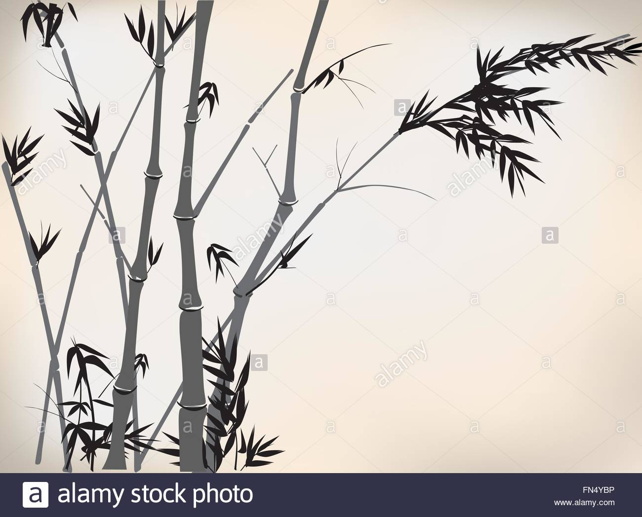 1300x1048 Old Chinese Bamboo Hand Drawing Stock Vector Art Amp Illustration