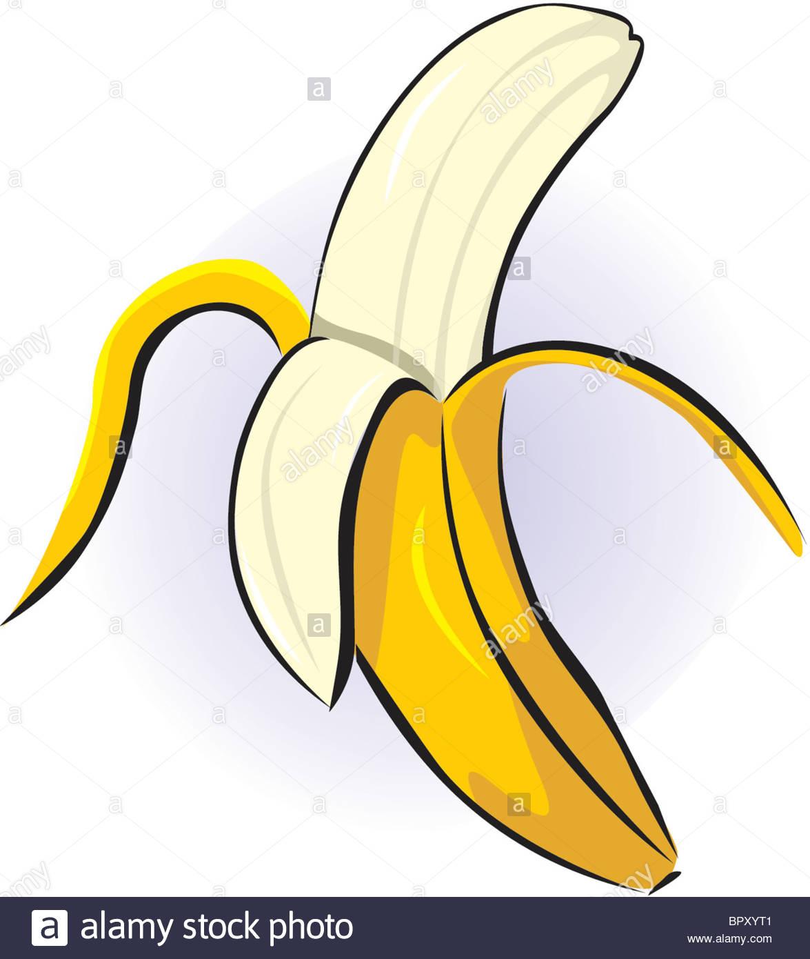 1175x1390 Drawing Of A Peeled Banana Stock Photo 31325393